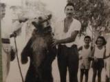Αρκουδιάρης
