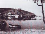 linaria_5