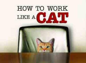 Πρέπει να είσαι «γάτα» για μη δουλεύεις σαν σκυλί …
