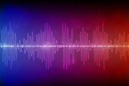 Ηχητική καταγραφή του επεισοδιακού Δημοτικού Συμβουλίου