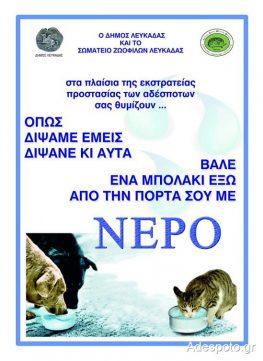 Λευκάδα: Αφίσες ευαισθητοποίησης «Βάλε νερό στα αδέσποτα»