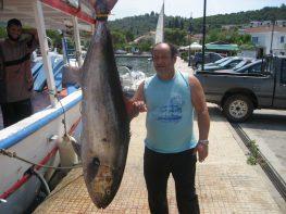 Γοφέτο 60 κιλά στο Μεγανήσι!