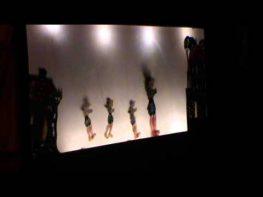 Από την παράσταση του Θεάτρου Σκιών