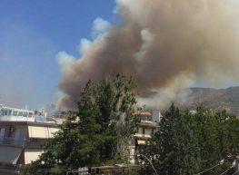 Δηλώσεις του Μεγανησιώτη Δημάρχου Βύρωνα Άκη Κατωπόδη για την Πυρκαγιά στον Καρέα