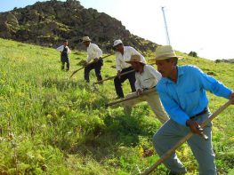 Ανακοίνωση ΚΚΕ για τις δηλώσεις Τσίπρα για τους αγρότες