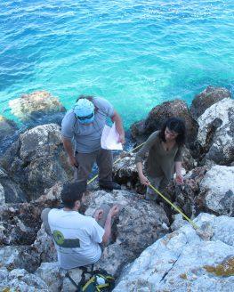 Δελτίο τύπου για την αρχαιολογική έρευνα στον Κυθρό