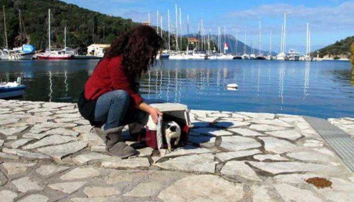 Το Σωματείο Ζωόφιλων Λευκάδας 25 με 27 Ιανουαρίου στο Μεγανήσι για 3ήμερο Στειρώσεων Γατών