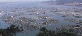 Στον σχεδιασμό για Ιχθυοκαλλιέργειες και η θαλάσσια περιοχή του Μεγανησίου;
